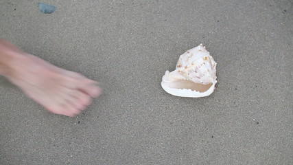 Man on the beach finding seashell