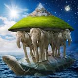 Fototapeta żółw - morze - Inne