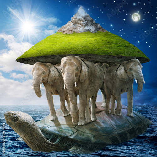 Fototapete Schildkröte - Meer - Andere