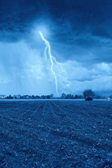 storm on the newly sprouted wheat field