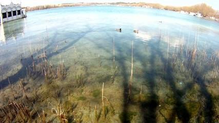 lago agua