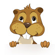"Beaver CREES. Look for Funny Beaver by Keyword ""CREES""."
