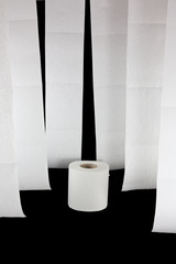 Hanging toilet paper with one roll