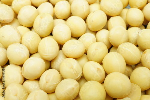 soy bean pattern as background