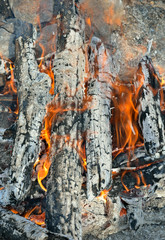 Aflame wood 1