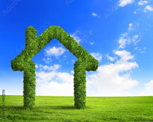 Green grass  house symbol
