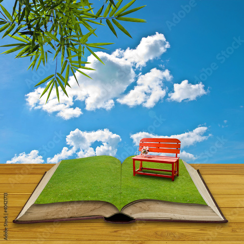 Red chair on grass in the open book
