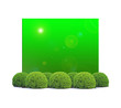 buxus talllés devant panneau vert