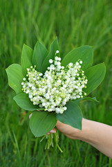 Lily of the valley (convallaria majalis) bouquet in hand
