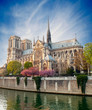 Fototapeten,paris,kirche,frankreich,notre dame