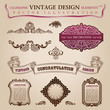 Calligraphic elements vintage Congratulation page decoration. Ve