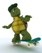 tortoise riding a skateboard