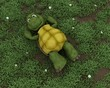 tortoise lying on grass in flowers