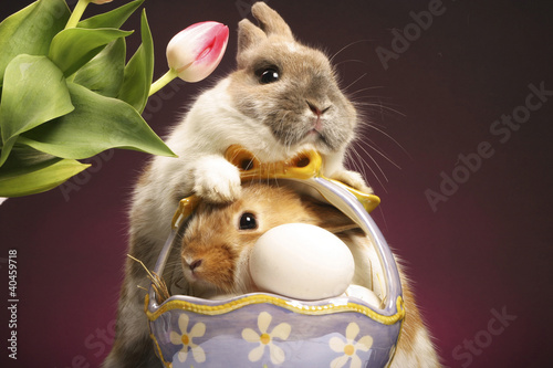 Two rabbits and a basket of eggs.