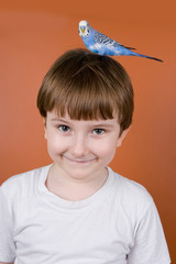Portrait smiling boy with a parrot on his head