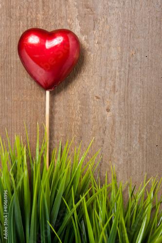 Herz und Gräser vor einer Holzwand