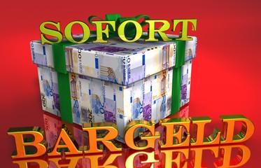 3D Geldgeschenk - SOFORT BARGELD