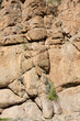 Details of stone in the Kaokoland desert
