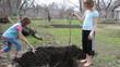 children planting a  tree in the garden