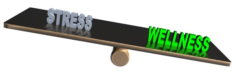 3D Waage2 - WELLNESS - STRESS