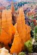 Hoodoos in Bryce Canyon NP, Utah, USA