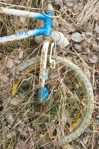 Abandoned Bike as Beautiful Junk