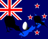 Kiwi bird, egg silhouette, NZ flag