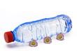 wasserflasche mit blumen