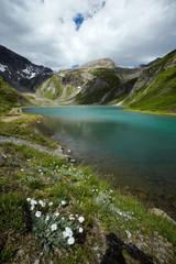 Natur Park Hohe Tauern II.