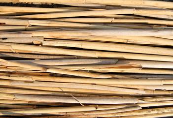 Clear bambus texture