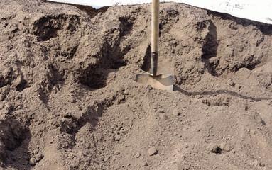 close up of organic compost