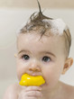 Baby girl with soap suds on her hair biting on a rubber duck