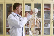 Doctor examining human skeleton model