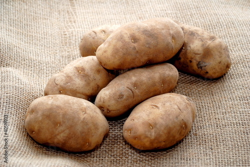 Potatoes on Burlap