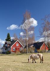 Idyllic Swedish vertical landscape