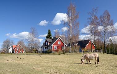 Idyllic Swedish countryside landscape