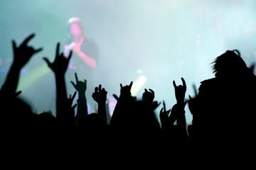 concert. contour of the fans