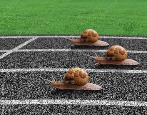 slimaki-scigaja-sie-na-torze-sportowym