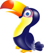Toucan bird cartoon