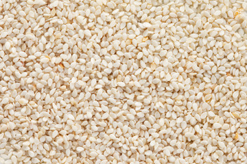 Sesame seeds (Sesamum indicum) background