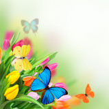 Spring flowers with exotic butterfly