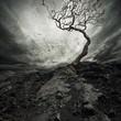 Fototapeten,wolken,konzept,dunkel,dramatisch