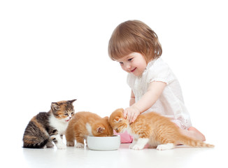 funny child feeding attractive kitten