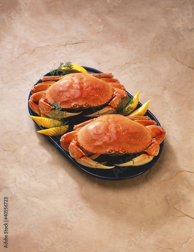 Two Crabs on a Platter