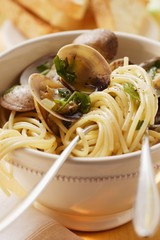 Spaghetti vongole with herbs