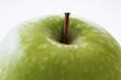 Granny Smith apple (detail)