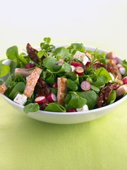 Mixed salad leaves with chicken and dried tomatoes