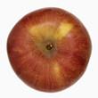 A 'Pink Lady' apple