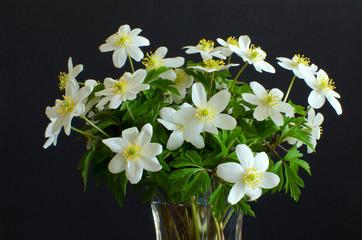 Bouquet of Anemones
