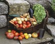 Various types of vegetables in basket with trowel